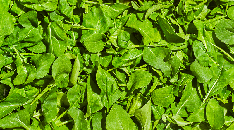 Background of Plenty Baby Arugula